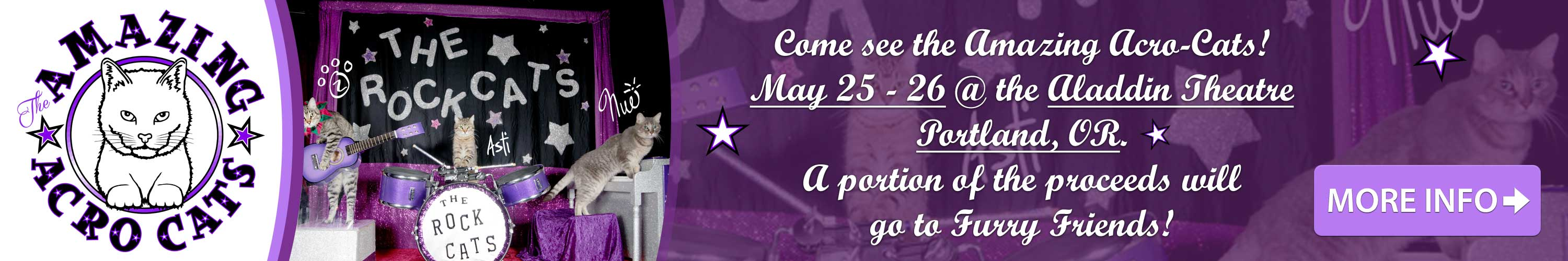 Acro Cats 2019 event banner