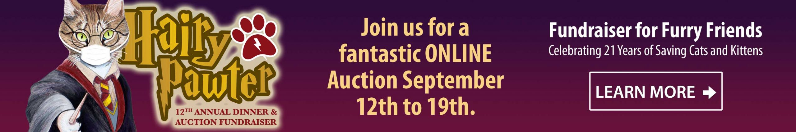 2020 Hairy Pawter Auction Banner