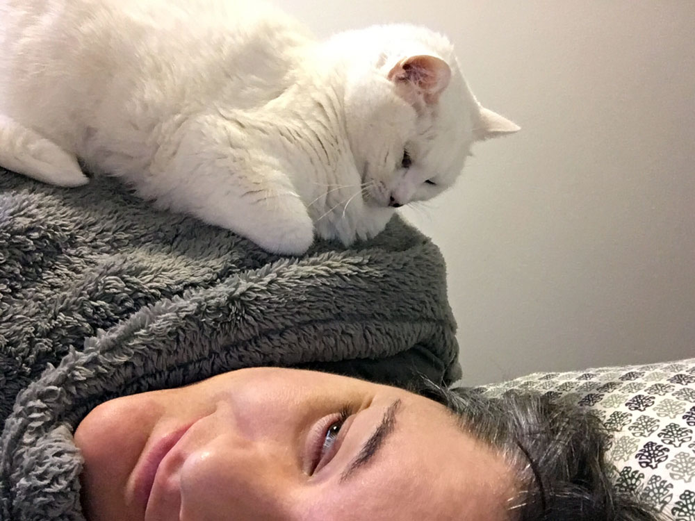 Cassie sitting on female's shoulder, looking down at her in bed