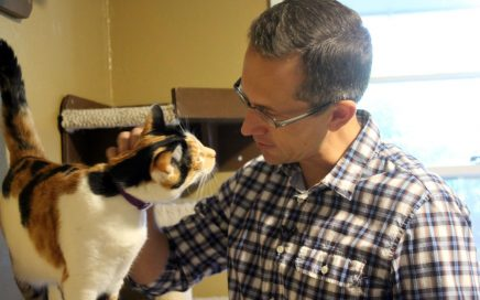 Lincoln Graves of KATU news petting a calico cat