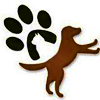 Second Chance Companions Logo of dog and cat